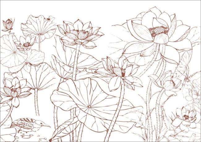 莲花绿叶-手绘画