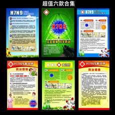 H7N9禽流感预防海报