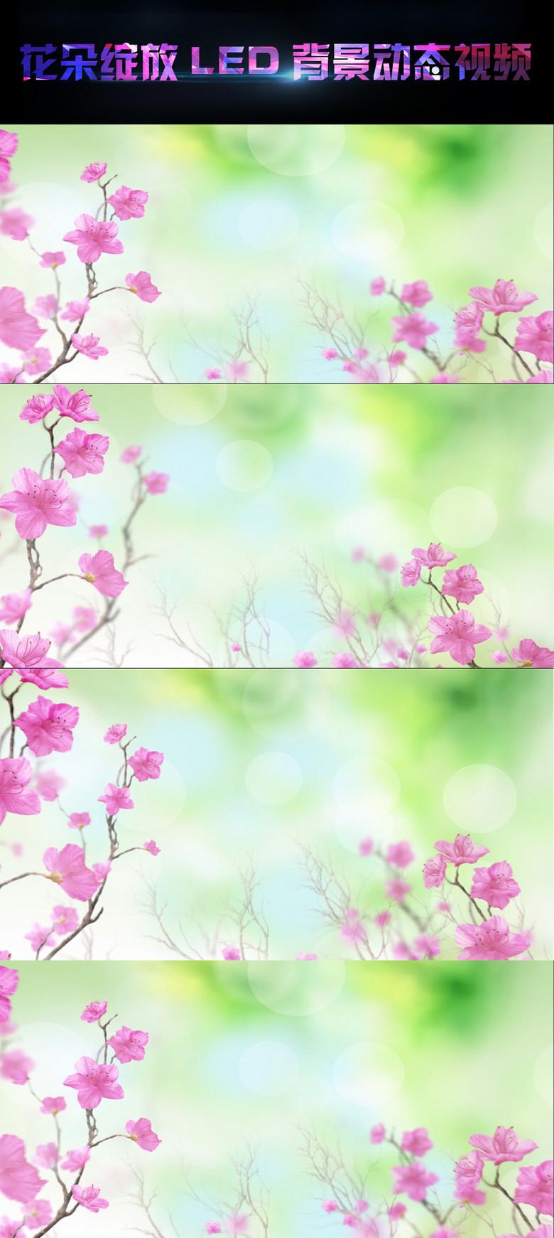 z唯美婚庆花瓣飘落led动态视频素材图片