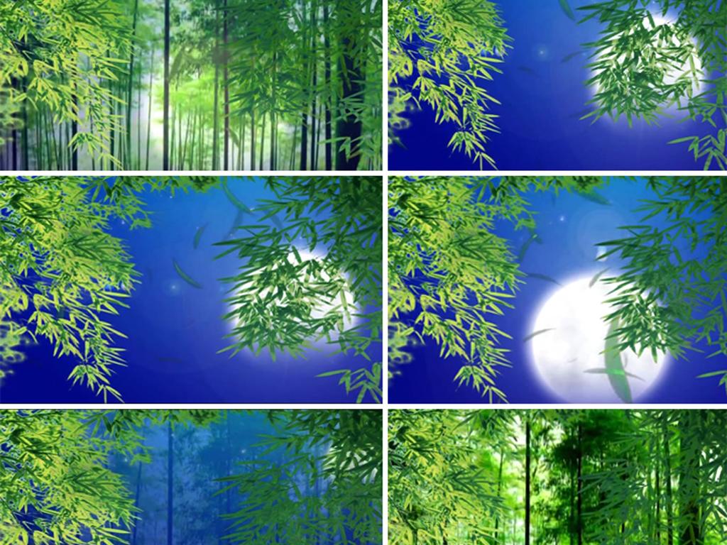 月光下的凤尾竹中秋节背景视频