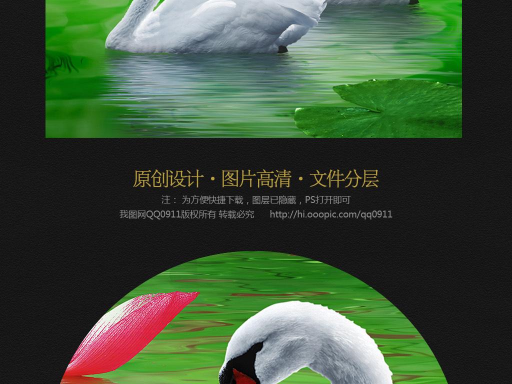 荷花荷叶天鹅中式玄关装饰画图片