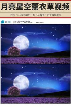 唯美<strong>月亮</strong>星空大树薰衣草花海LED大屏幕