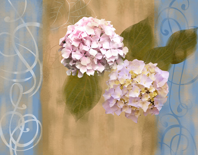 欧美复古花纹花卉绣球花壁画