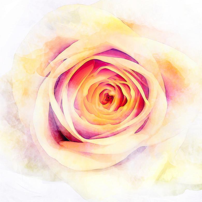 现代唯美浪漫玫瑰花朵高清大图油画背景墙效果图 13511465 油画 立体图片