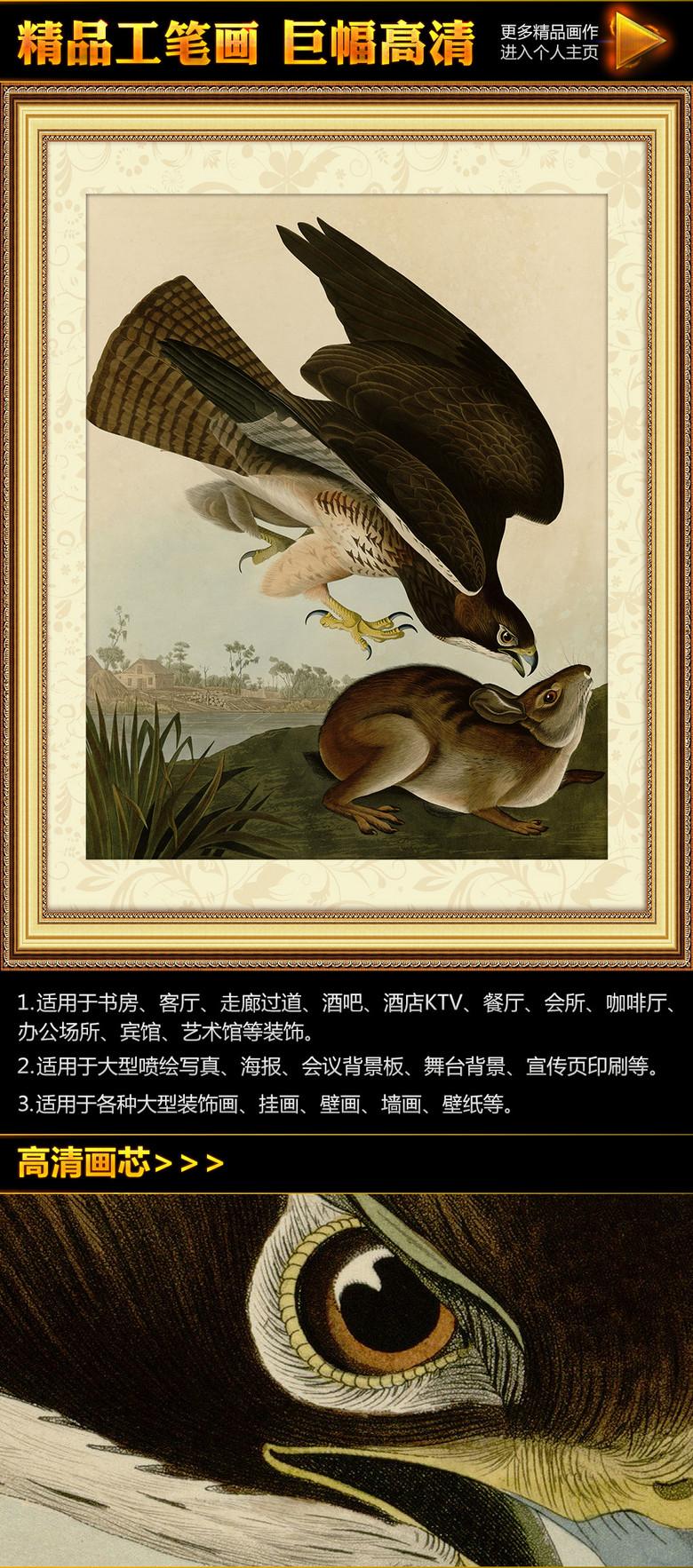 杜邦 鹰抓兔 工笔画挂画无框画装饰画高清图片下载 图片编号
