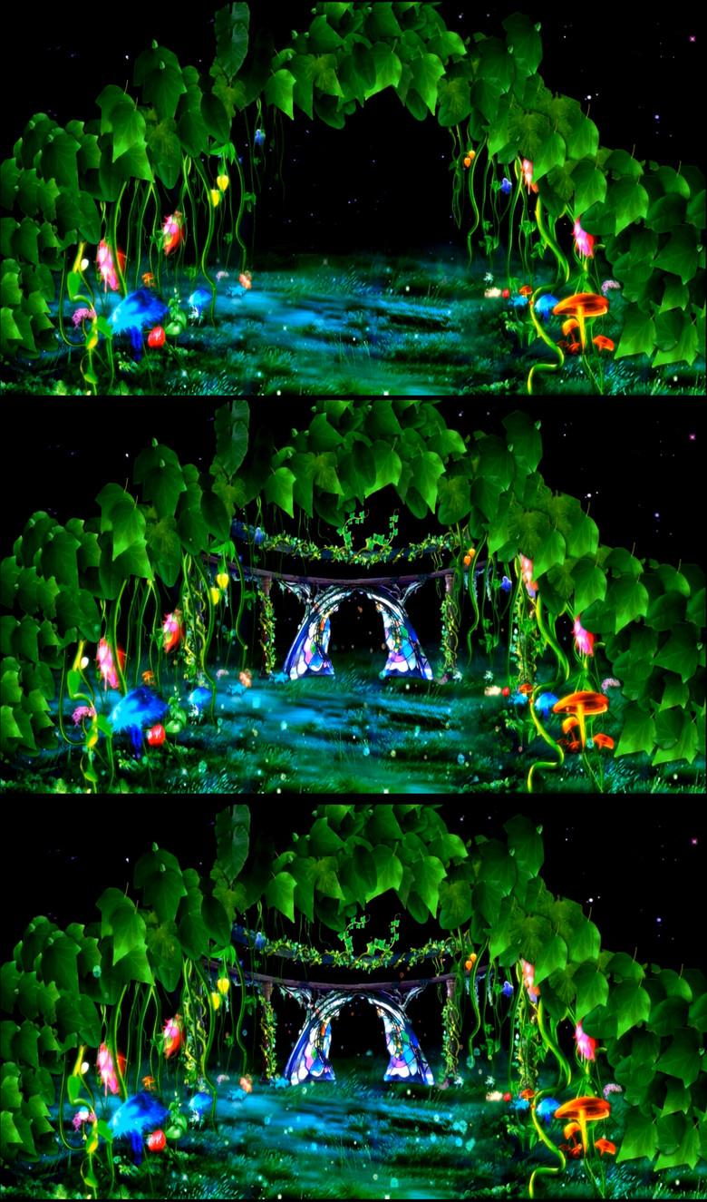 梦幻唯美星空森林童话高清视频图片