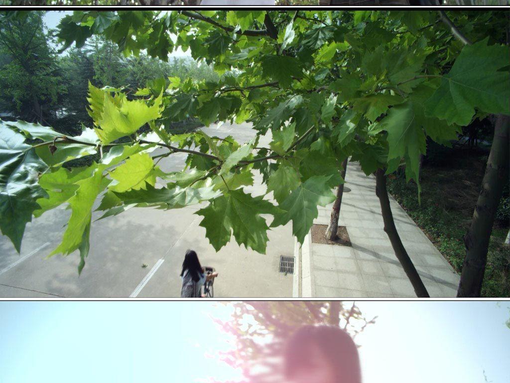 大学校园青春女生骑自行车树林看书学习视频
