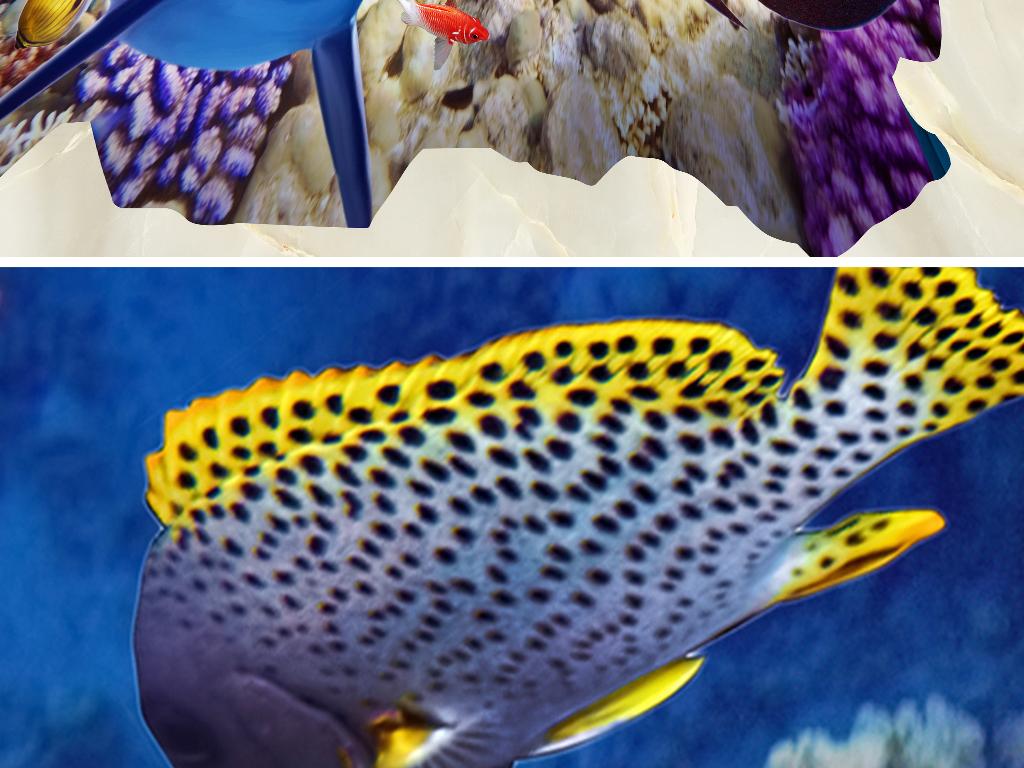 海底世界海龟海豚3d立体画地画