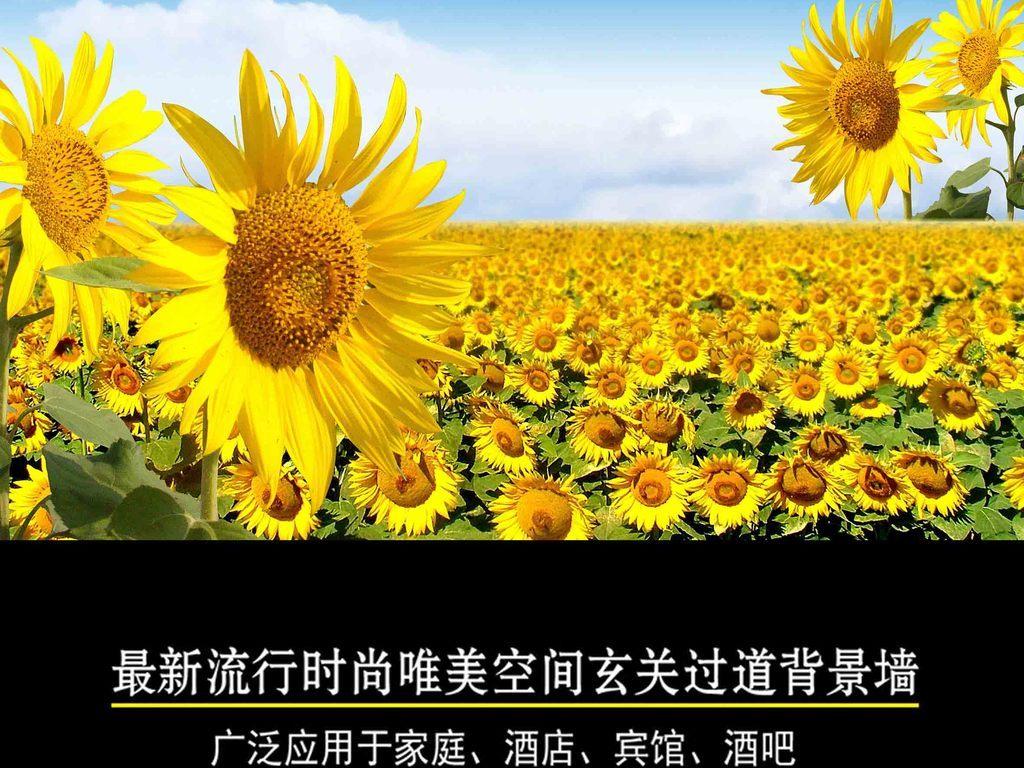 现代简约向日葵风景唯美背景墙