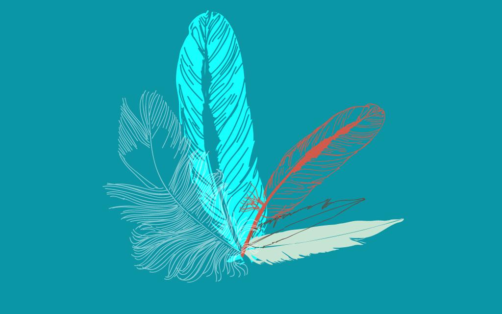 手绘主题房羽毛