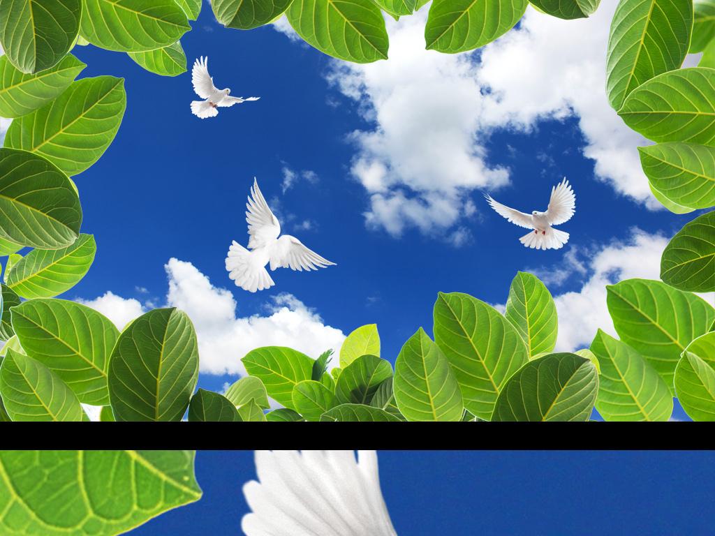 绿叶蓝天白云鸽子吊顶图图片