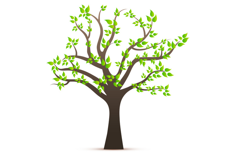 Image result for 树,
