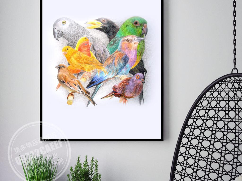 欧式手绘彩色鸟无框画