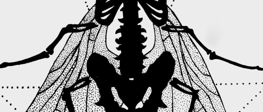 欧式手绘黑白线条麋鹿无框画