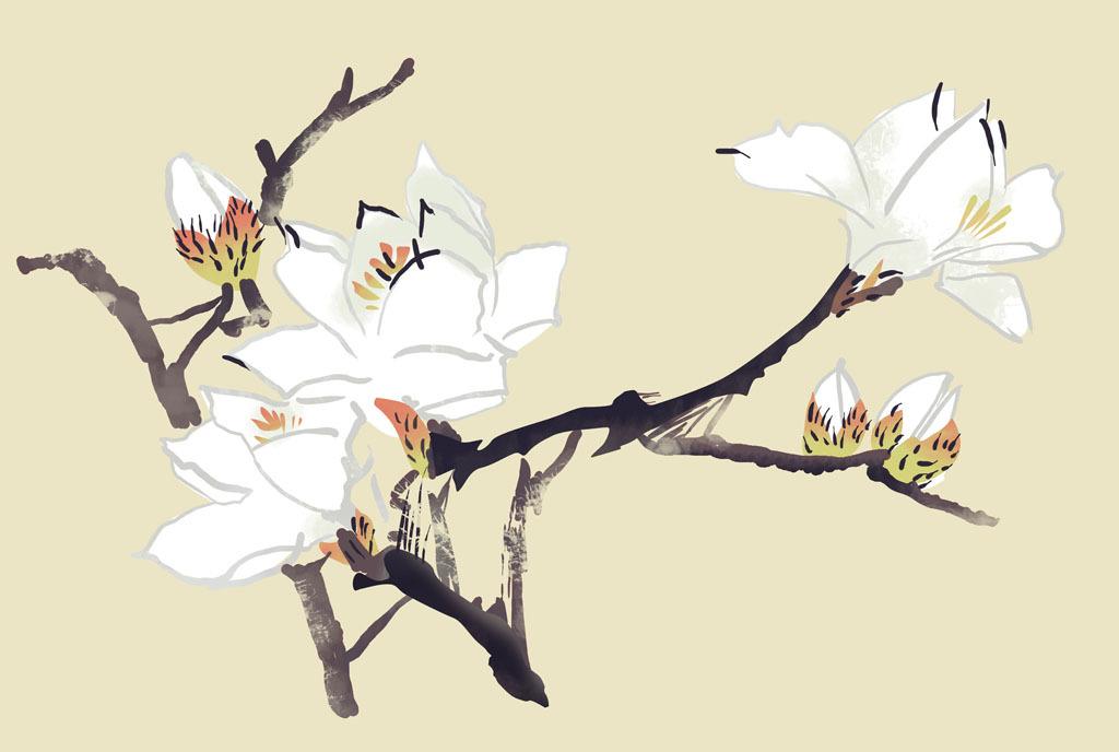 中式手绘玉兰花效果图(图片编号:15062110)