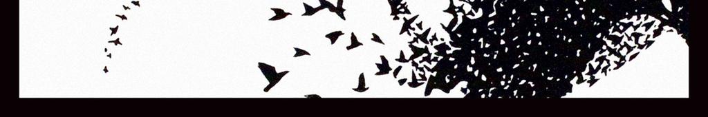 抽象画现代画简约画室内装饰艺术插画老鹰鹰麻雀黑白