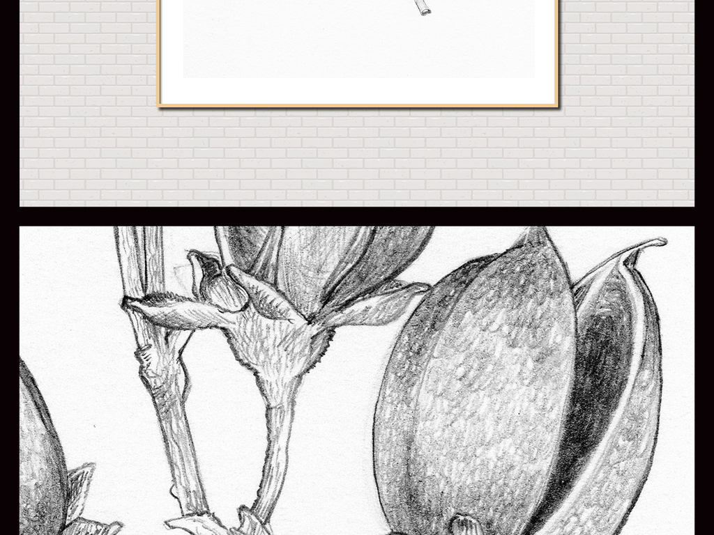 手绘植物墙 黑白