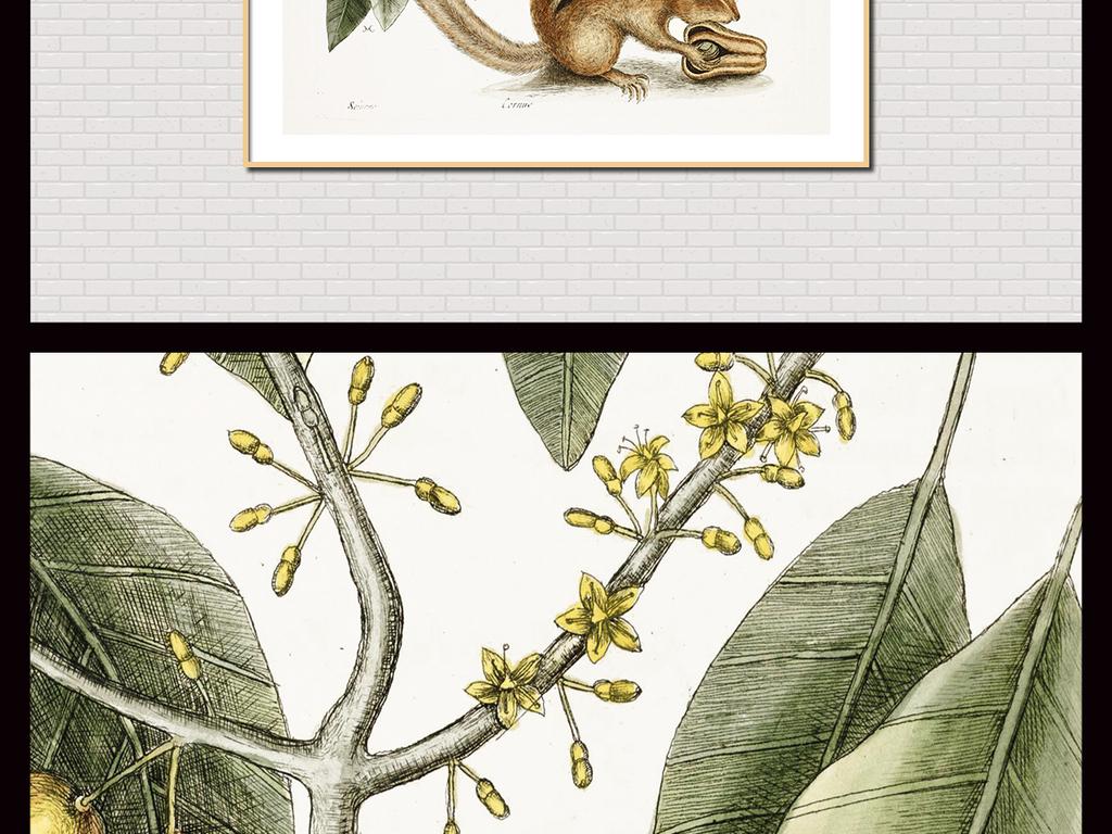手绘复古植物无框画