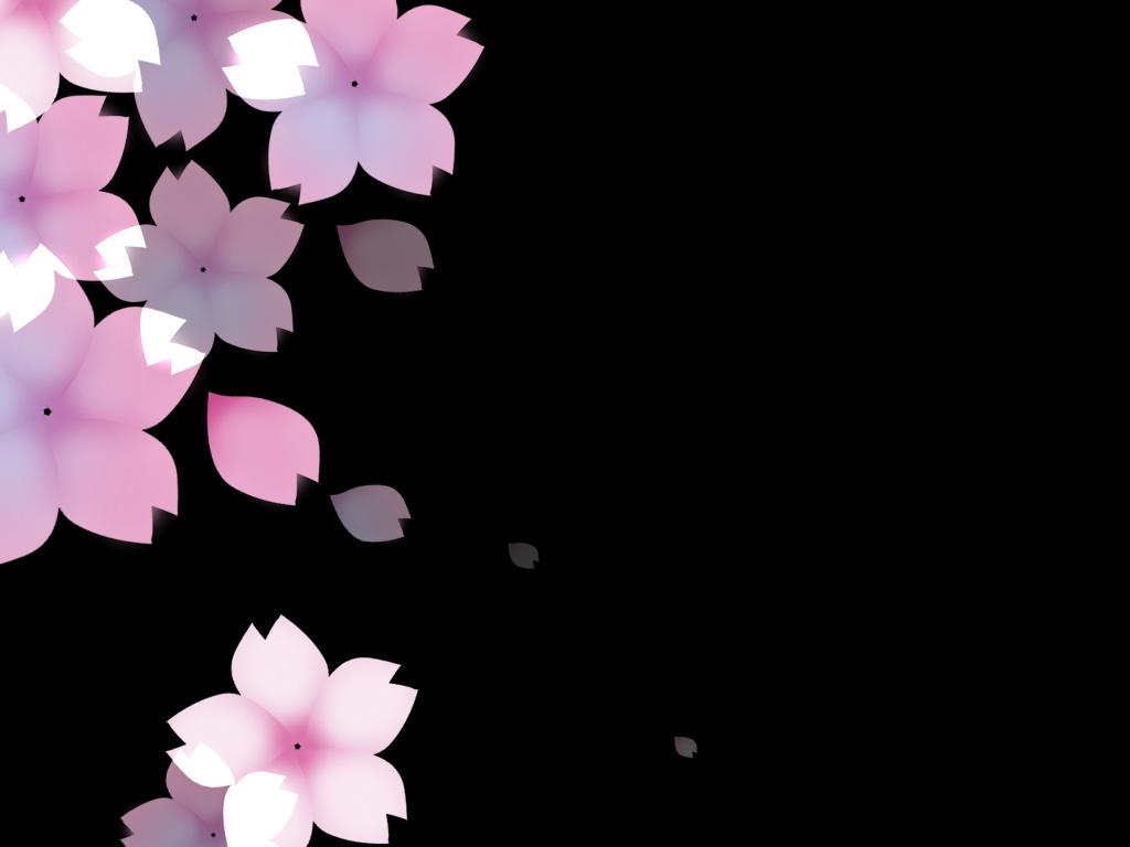 樱花花瓣钢笔画-简约唯美漫天飘零的樱花花瓣图片背景图设计