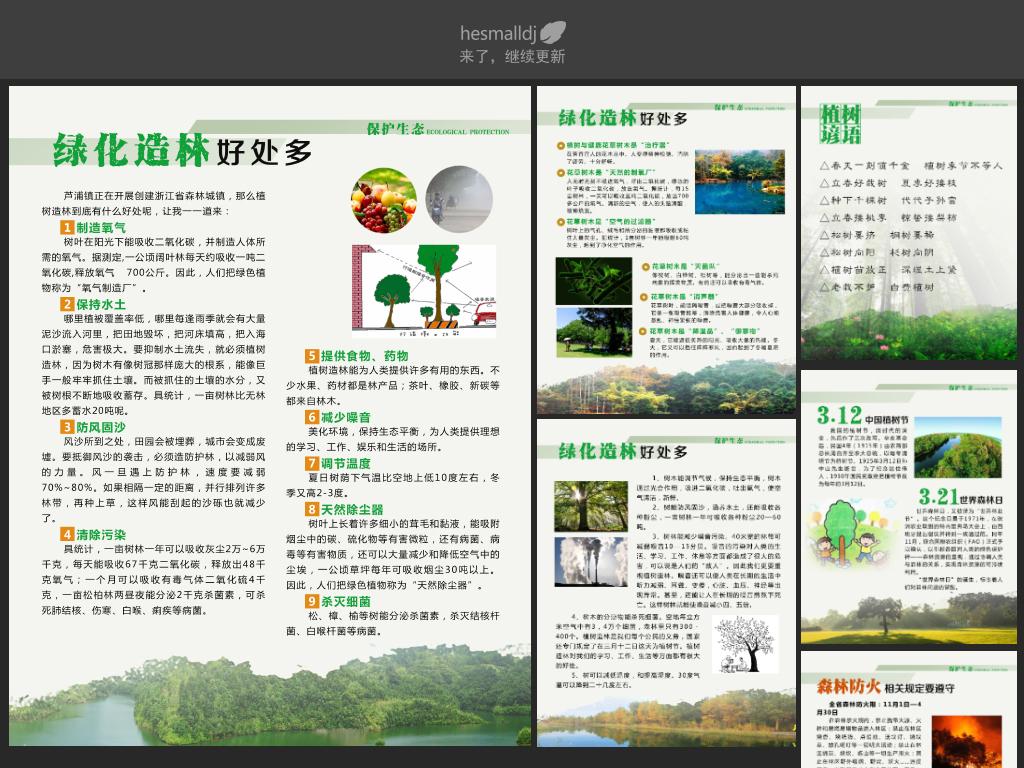 世界湿地日保护野生动物濒危动物生物多样性植树造林的好处环保宣传栏