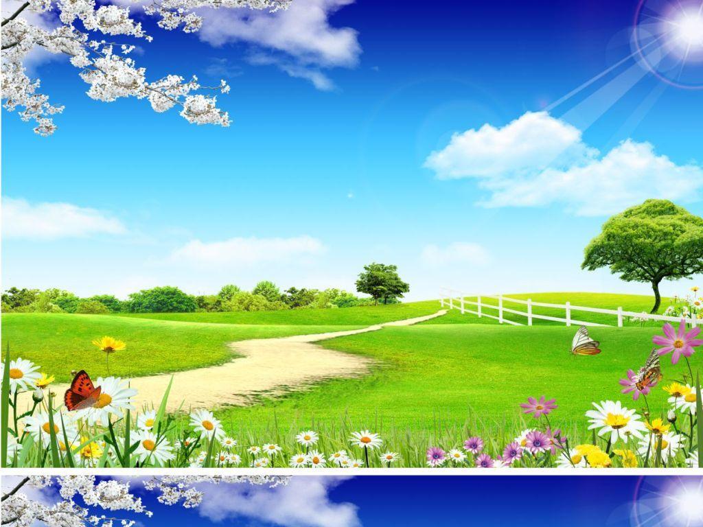 户外风景蓝天白云绿色草地路桃花蝴蝶线条