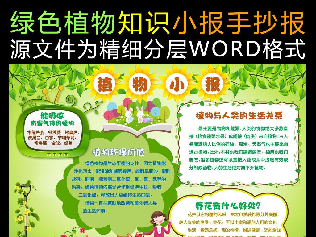 word版绿色植物知识小报手抄报