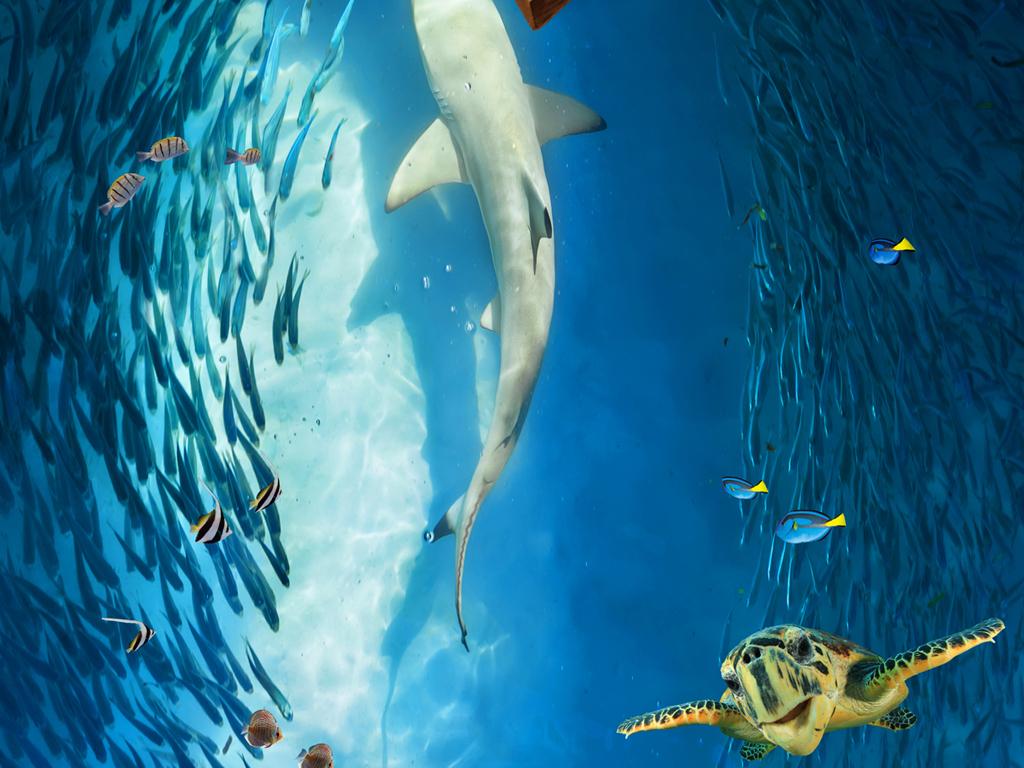 海底世界海豚鱼群洗手间浴室卧室3d地板