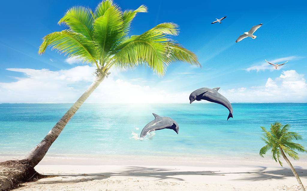 海边椰树海豚风景壁画风景大海蓝天白云海鸥海边椰树
