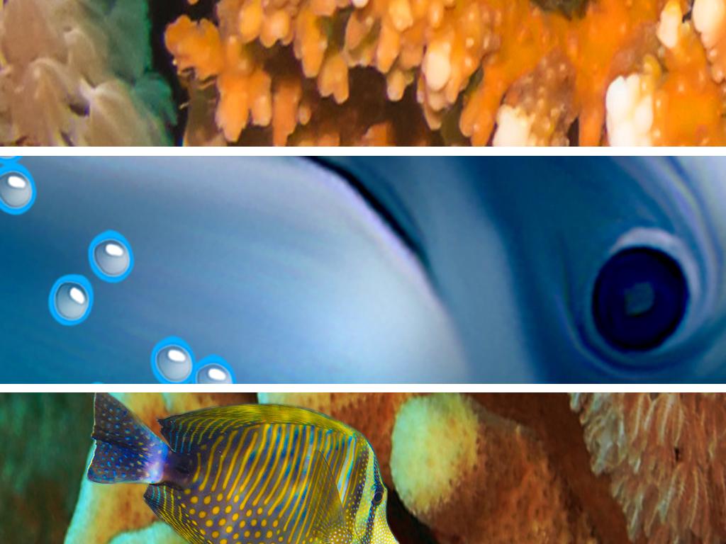 唯美海底世界洗手间浴室走廊过道3D地板高清图片下载 图片编号