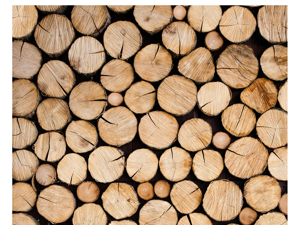 3d立体木材木头切面截面年轮玄关