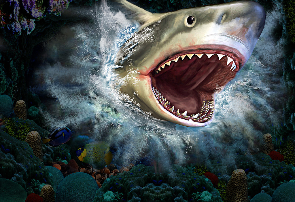 大鲨鱼3d墙贴3d墙画海底世界