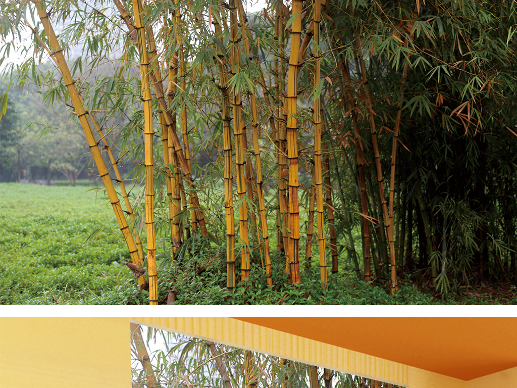 竹林山水风景玄关装饰画