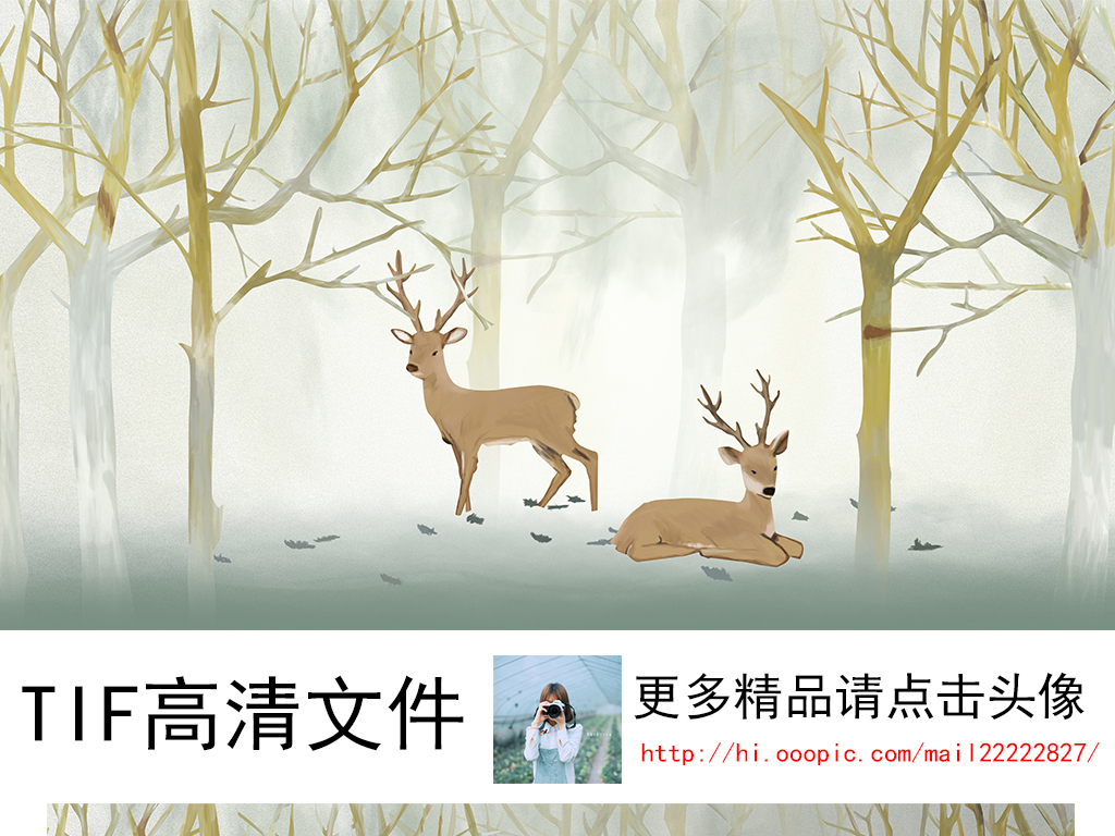 树林                                  鹿