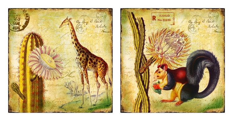 动物花卉美克美家欧美家居酒店装饰画