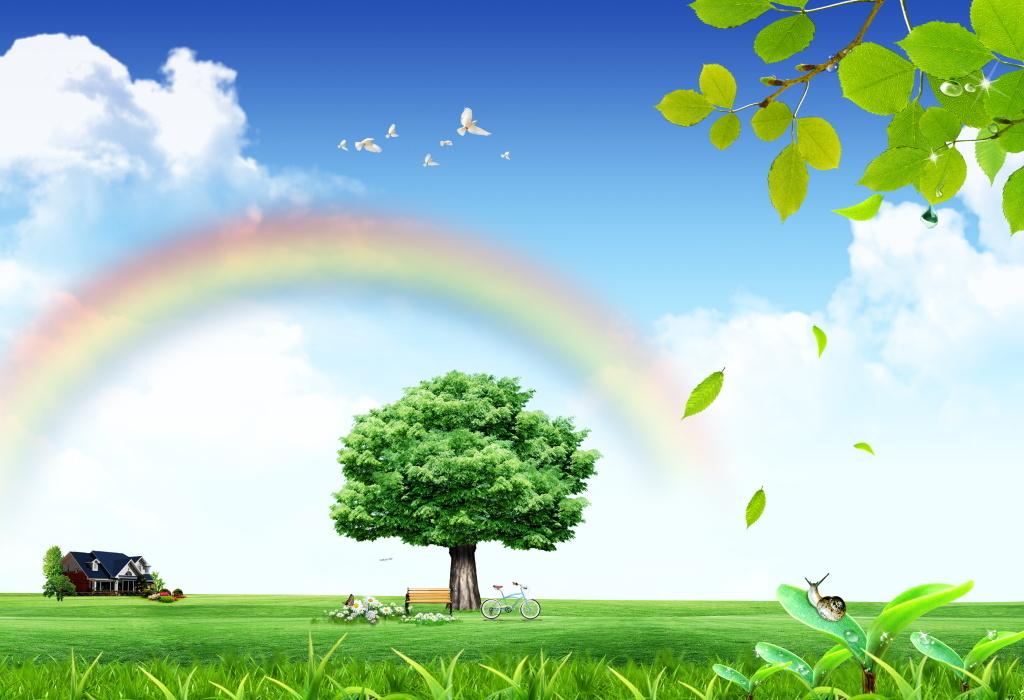 迷人景色彩虹桥大树下的休闲时光和谐背景