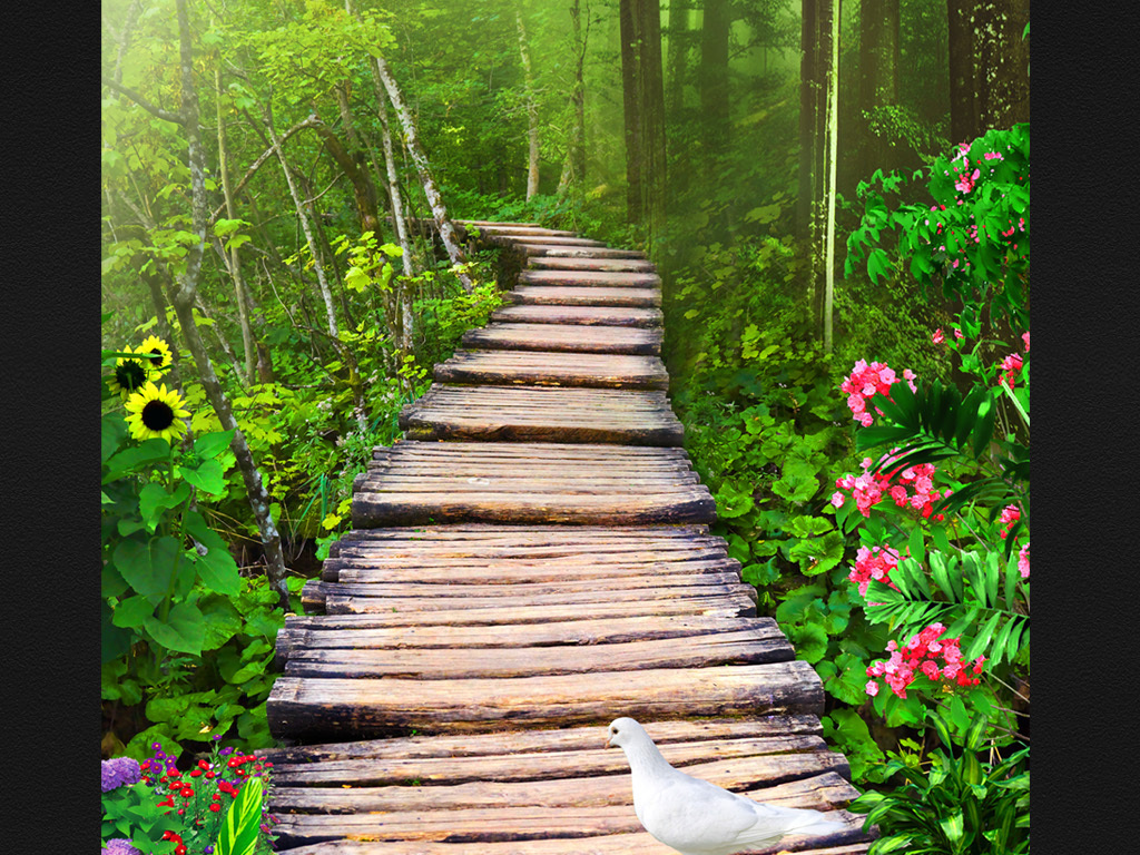 中式玄关意境山水画鸟森林小道风景画花鸟玄关花鸟花卉森林大树