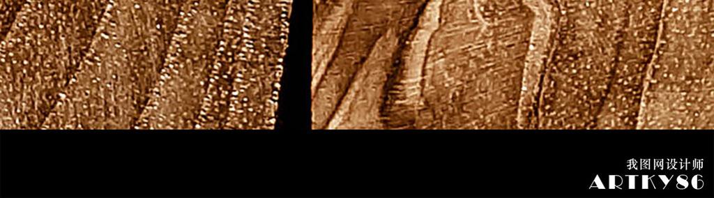 背景墙|装饰画 卫浴背景墙 卫浴主题背景墙 > 复古仿古黄色木头桩树桩