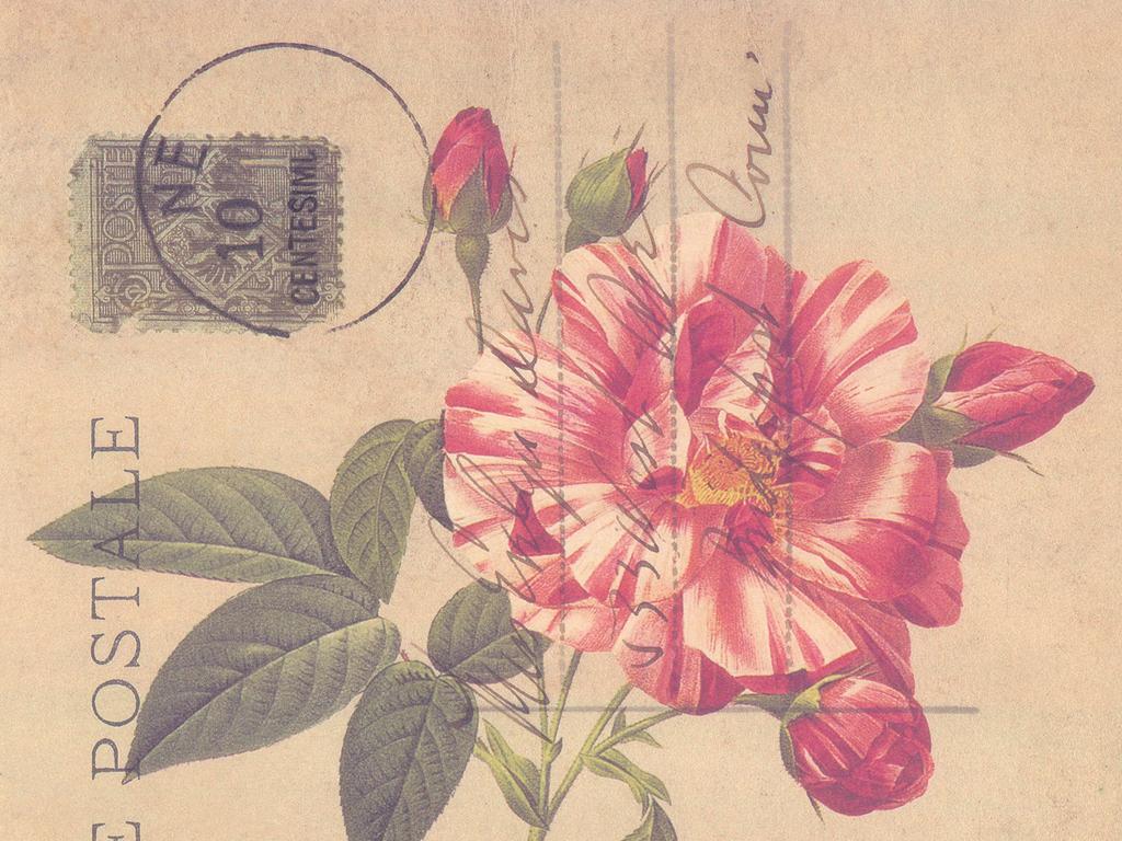 简洁欧式花朵无框画