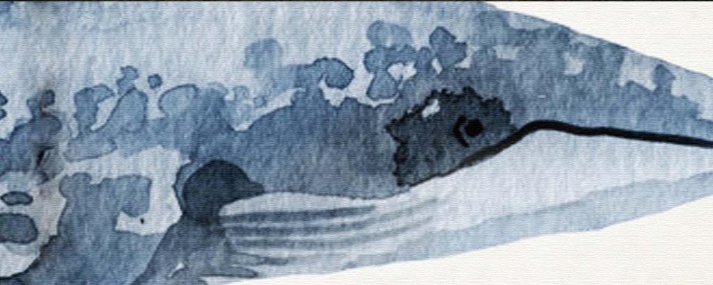 北欧现代手绘鲸鱼水彩床头画家居装饰画