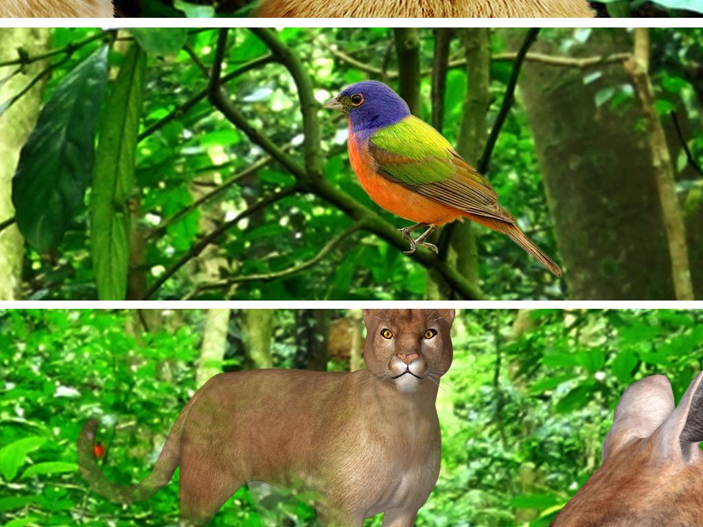 我图网提供精品流行梦幻原始森林动物立体全屋主题空间背景墙素材下载,作品模板源文件可以编辑替换,设计作品简介: 梦幻原始森林动物立体全屋主题空间背景墙 位图, RGB格式高清大图,使用软件为 Photoshop CS5(.tif分层)