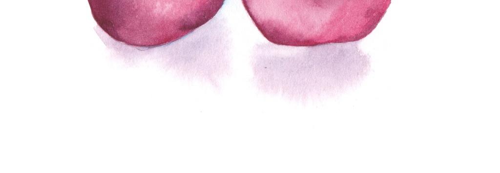 手绘水彩水果插画模板下载 手绘水彩水果插画图片下载手作pop葡萄桃子