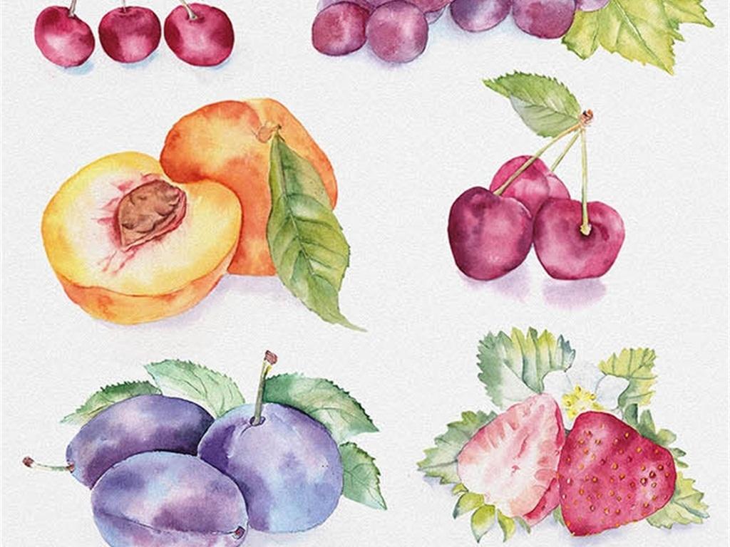 荔枝手绘图片简单图片
