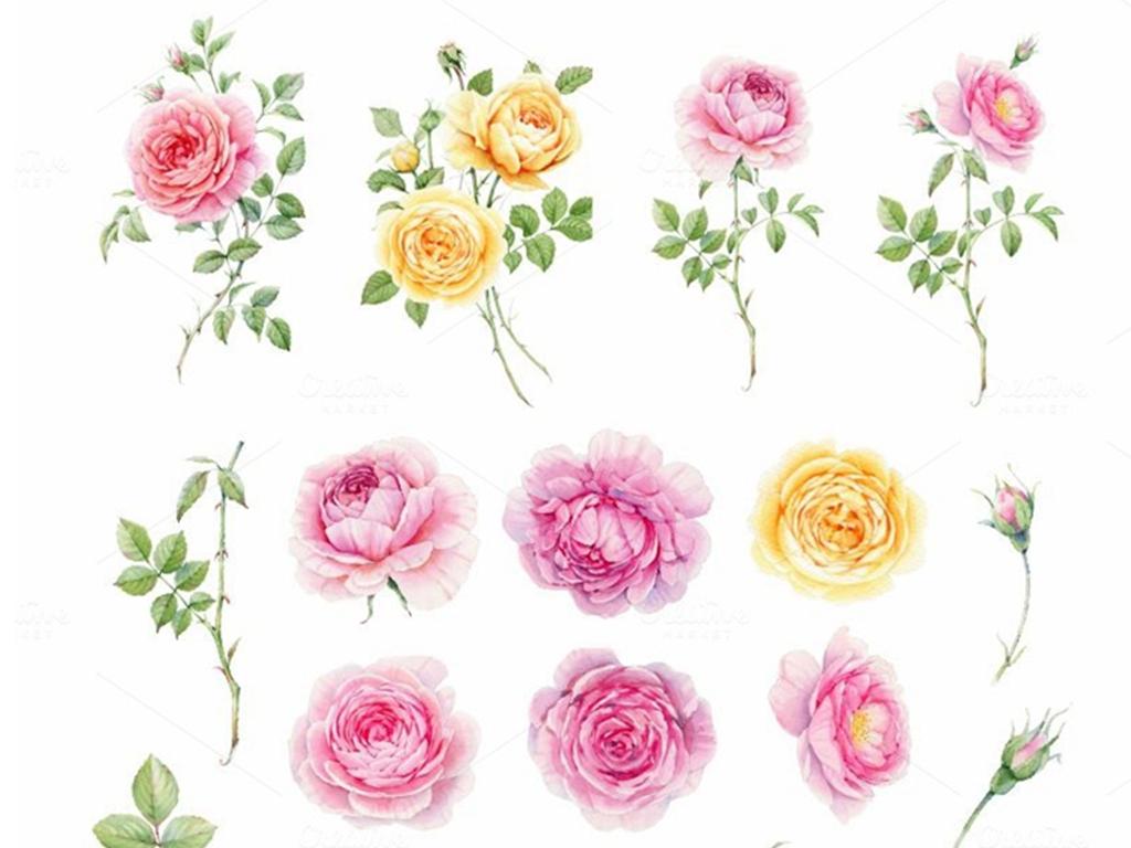 水彩手绘英伦玫瑰png免扣素材