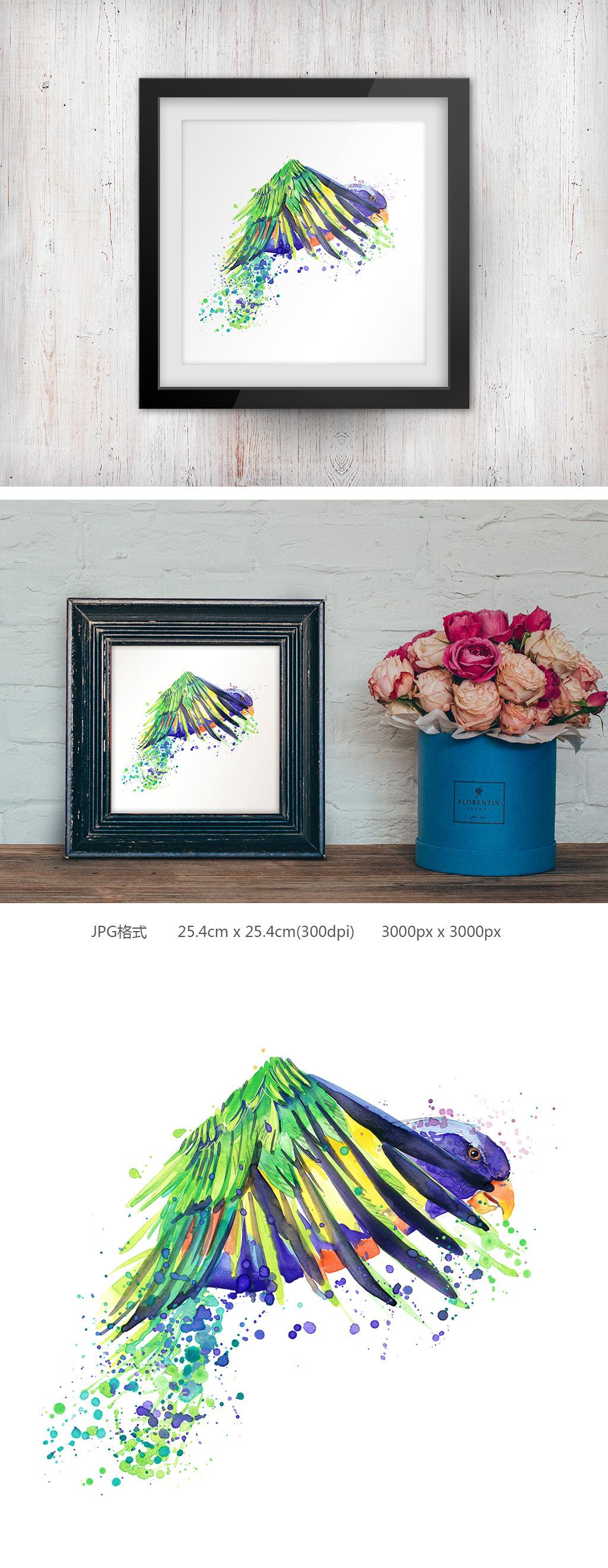 手绘水彩鹦鹉无框画个性装饰画
