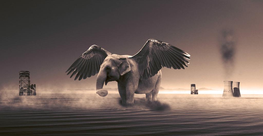 平面|广告设计 海报设计 国外创意海报 > 创意大象动物分层背景  版权