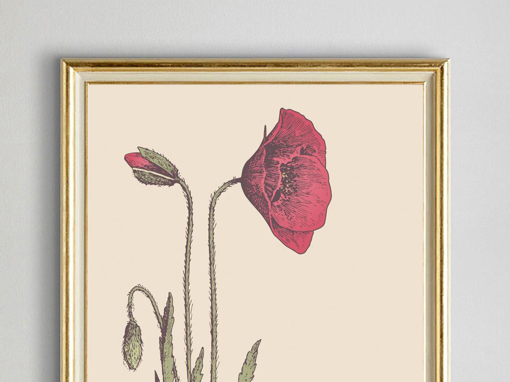 小清新手绘复古花卉罂粟花油画装饰画