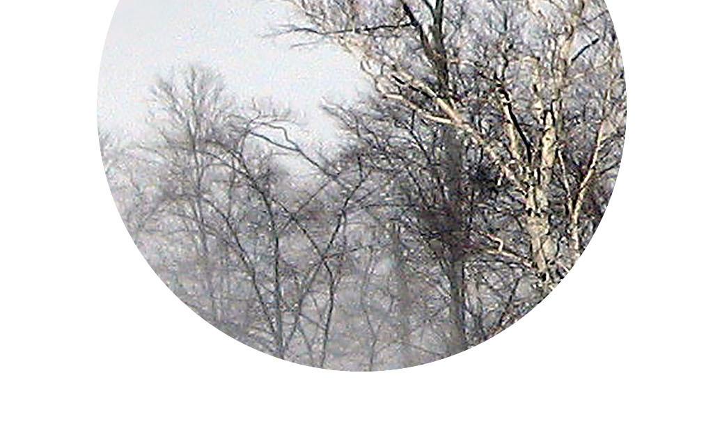 无框画意境图清新意境山水意境图片