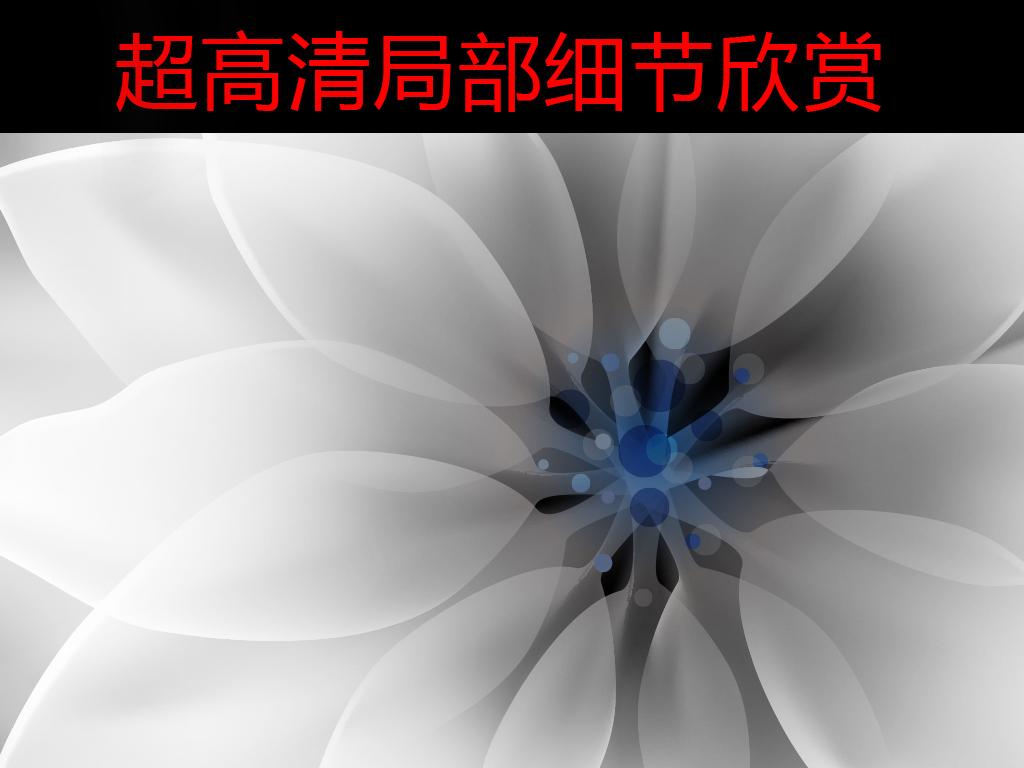 唯美黑色透明花背景墙装饰画