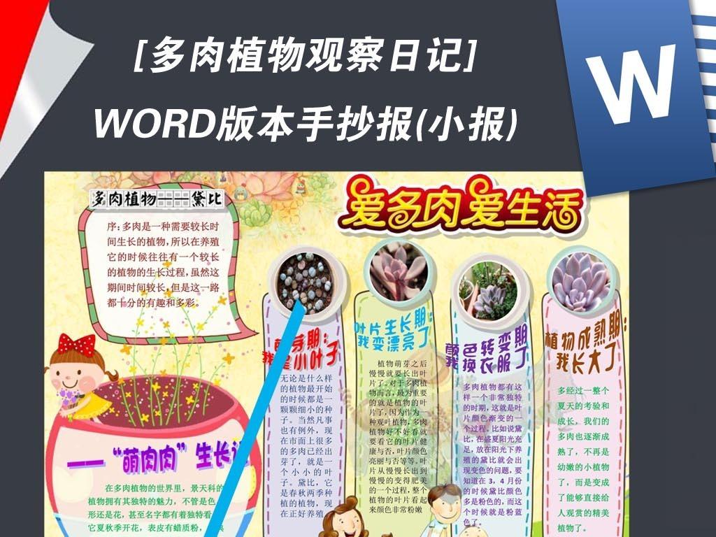 word多肉植物生长观察日记小报手抄报