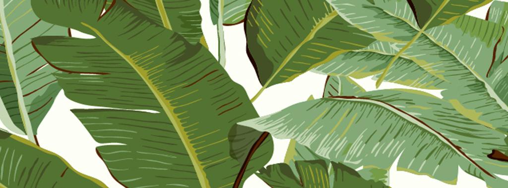 清新自然绿色热带雨林手绘芭蕉叶子欧式墙纸